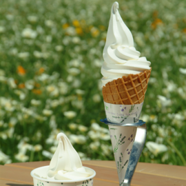 Vanilla soft-serve ice cream