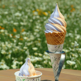 Lavender & cantaloupe soft-serve ice cream